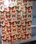 051MRG Штора MIRAGE 180*200см полиэстер (Бабочки)