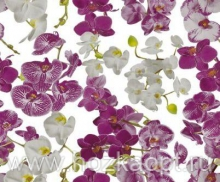 8990/01 Клеенка Wondertex 1,4*20м Орхидеи (ПВХ на нетк.осн.)